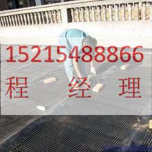 漳州绿化塑料排水板欢迎洽谈/福建地下停车场排水板施工指导图片