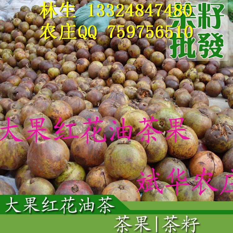 柚子水果动物图片