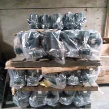 供应海龙泵、5HP/3.75KW海龙立式泵浦/管道离心泵图片