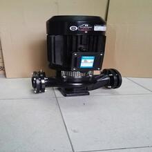 供应GD100-30海龙泵/7.5KW高扬程离心管道泵/冷却泵/冷冻泵图片