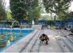 游泳爱好者常用的太阳能热水工程
