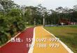 唐山厂家直供生态透水砼园林景观台阶彩色艺术透水地坪