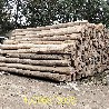 销售批发老榆木板材