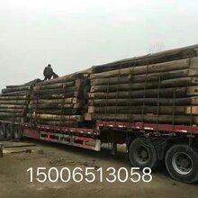 山东济南大量销售批发老榆木板材图片