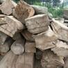 大刚木材老榆木板材,陕西销售老榆木方木