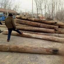 老榆木旧木板图片