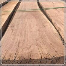 合肥老榆木板材批发价格,直拼板图片