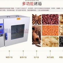 小型烤箱价格是多少小型烤箱批发厂家图片