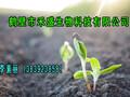 高含量有机肥发酵剂厂家腐熟剂效果好用量少产量高-鹤壁禾盛图片