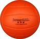 林书豪软式排球耐打柔软不伤手腕安全环保