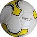 足球训练营足球培训用球5号4.0TPU皮革机缝足球质量保证价格实惠