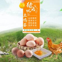 綠無憂正宗農家散養土雞蛋30枚新鮮土雞蛋自產自銷圖片