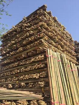 北京竹竿出售竹竿价格
