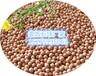 水处理麦饭石矿化陶瓷球生产厂家