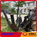 轮式移树机价格装载机安装移树机大型挖树机