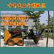 中首重工移树机价格928园林挖树机四瓣移树机全国包邮