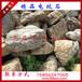 最新小龟纹石·盆景小龟纹石批发价格