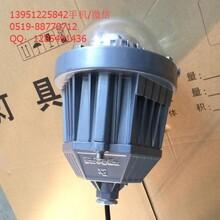 BPC8765免维护LED防爆平台灯20W36W45W防爆LED吸顶灯