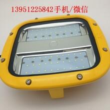 HRD93LED防爆平台灯40W50W60W防爆吸顶灯化工厂电厂用路灯