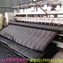 山东棉被厂家供应蔬菜大棚保温被保温防雨图片