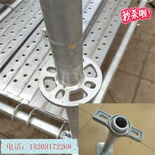 广东深圳盘扣式脚手架厂家供应热镀锌建筑工程专用图片