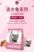 貓糧犬糧心糧寵物食品圖片