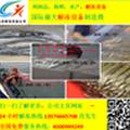 供应大昌dc-6589羊肉解冻设备