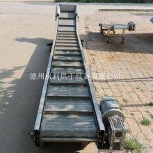 不銹鋼鏈板輸送機不銹鋼板式輸送線廠家定制加工圖片