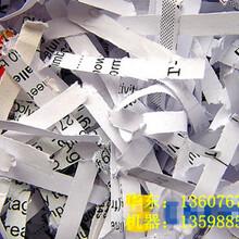 废纸撕碎机/废纸切碎机/撕碎机厂家