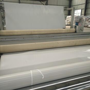 泰安聚乙烯土工膜设备价格