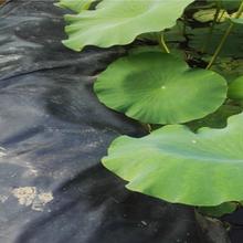 巴中水产养殖防渗膜供应厂家图片