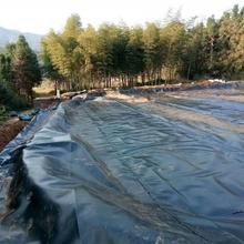南充养猪场防渗土工膜供应厂家图片