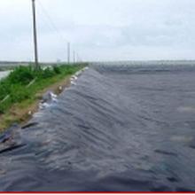 宝坻鱼塘防渗膜供应厂家图片