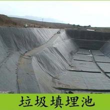 津南水产养殖防渗膜供应厂家图片
