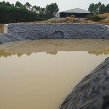 巴南鱼塘防渗膜供应厂家图片