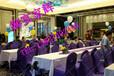惠州展会庆典物料出租、大圆桌贵宾椅出租、红酒香槟杯出租、餐具餐刀出租