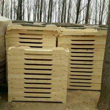幼儿园实木床幼儿床儿童床幼儿园单人床艺贝幼儿园实木床厂家图片