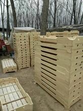 济宁幼儿园实木床幼儿园樟子松实木床学生床单人床