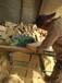 幼兒園大型戶外積木玩具兒童木質積木戶外搭建區積木意義山東積木玩具廠家