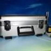 VT800型雙通道現場動平衡測量儀圖片