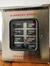 SMJ-ZW型碎煤機振動、溫度監控儀圖片