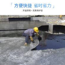 1.5厚BAC-P双面自粘防水卷材原厂直供图片