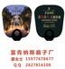 广西南宁广告扇子印刷厂,南宁定做广告礼品扇,专版印刷
