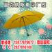 广西南宁广告伞厂,南宁创意广告伞定做,南宁礼品伞
