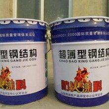 建筑膨胀性防火涂料生产厂家