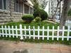 大连凯瑞现货供应PVC草坪,庭院护栏,款式多多,质量杠杠的。