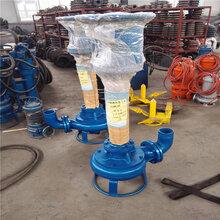 长轴液下污泥泵、煤泥泵、液下抽沙泵立式吸砂泵图片