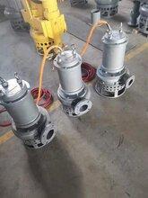 耐腐蝕不銹鋼泵不銹鋼耐腐蝕泵耐腐蝕污泥泵圖片
