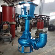山东潍坊液下泥浆泵立式河塘清淤泵图片