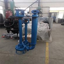 安徽宿州大流量液下清淤泵廠家圖片